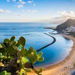Kanarieøerne byder altid på sommer og sol